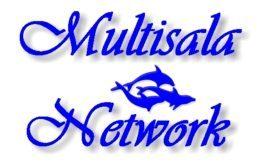 logo_msnt03_px263_163